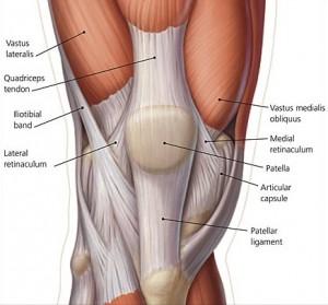 Knee-Pain-300x279